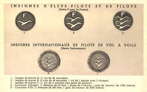 """Vooroorlogse zweefvliegbrevetten. Hier de insignes voor Franse brevetten. Op Belgische brevetten staat de letter """"B"""". De insignes met de meeuwen werden ontworpen door Fritz Stamer rond 1924"""